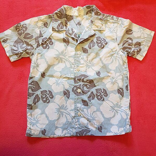 Поло, сорочка, майка 4р