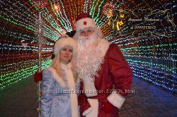 Ведущая и музыка Дед Мороз и Снегурочка на новогодний корпоратив