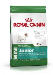 Корм Royal Canin развес СП Mini Junior - 101грнкг