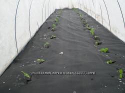 Агроволокно черное 50грм. 1, 6-100м.