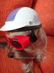 шлем для вашего питомца