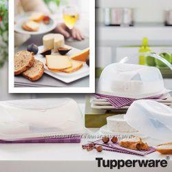Сырница малая  Tupperware