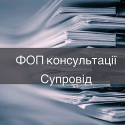 Звітність ФОП, годовая отчетность ФОП, сдача отчетности