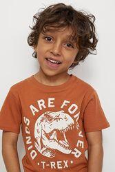 Красивенные футболки CARTERS, crazy8, HM на мальчика, в наличии
