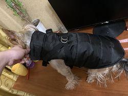 Курточка жилет для собак весна осень зима