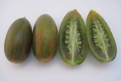 Семена разноцветных томатов
