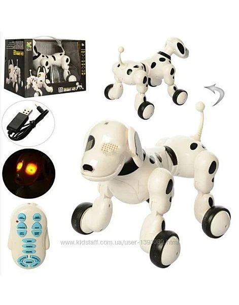 Робот собака на радиоуправлении 619