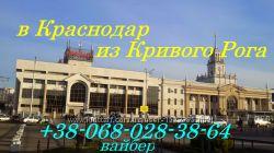 Поездки в Краснодар из Кривого Рога