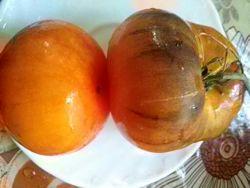 Семена томатов более 150 сортов, продолжение